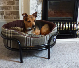 Bennington Belvoir Dog Bed